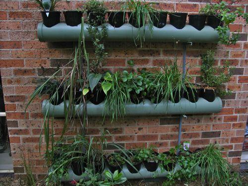 Sol agua tierra cocina de temporada saludable - Construir jardin vertical ...