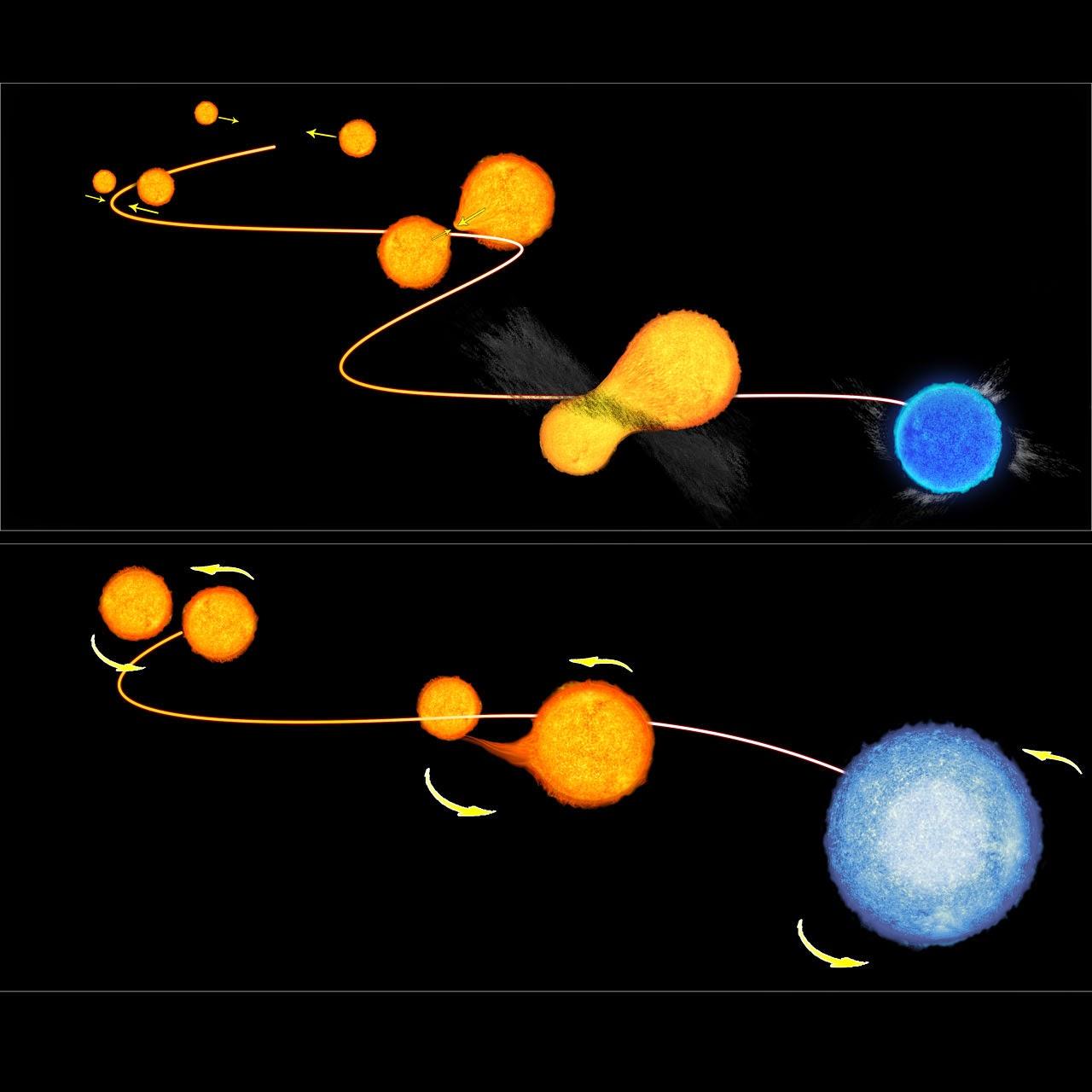 Две модели возникновения голубых отставших звёзд