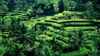 eksotisnya indonesia