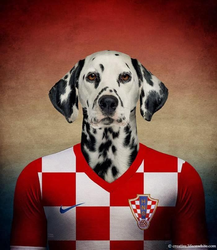 Croatia – Dalmatian