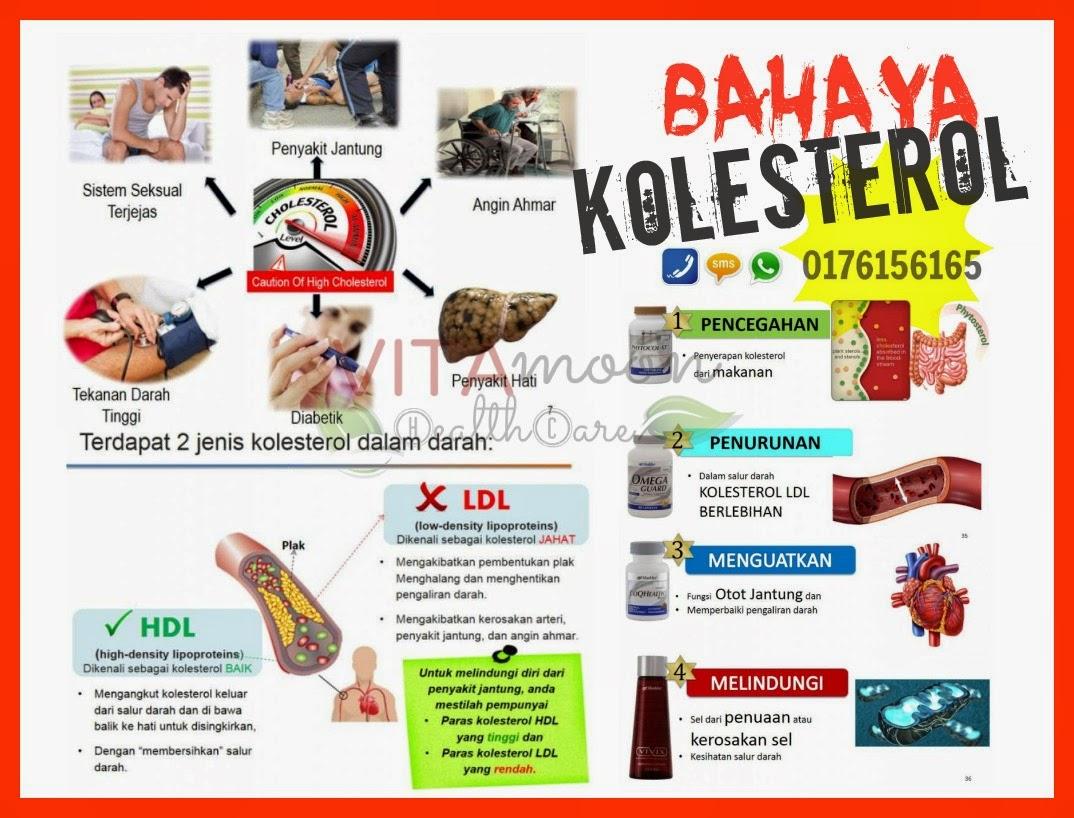 bahaya kolesterol