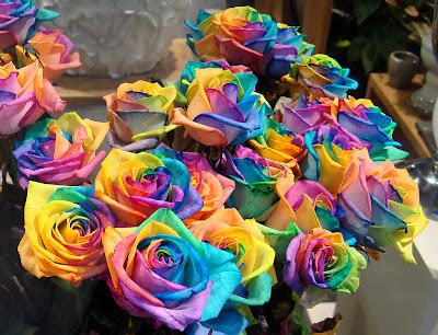 14 'قوس قزح' من أجمل الزهور التي قد تراها   حقن الزهور بصبغات مختلفة