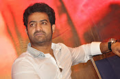 Temper movie success meet photos-thumbnail-18