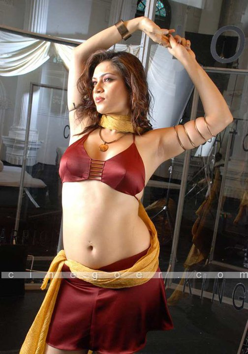 Desi Masala Navel Housewife In Hot Saree And Cleavage Photo ...