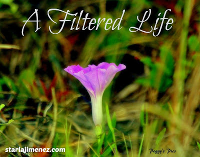 Help with living the way God wants you to. Letting God filter your life.