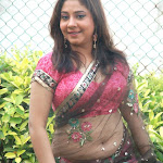 South Indian Actress Meenakshi Kailash Hot Photos in Transparent saree