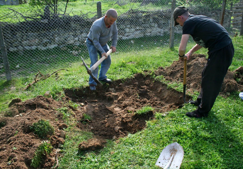 Beginning the hugelkulture bed