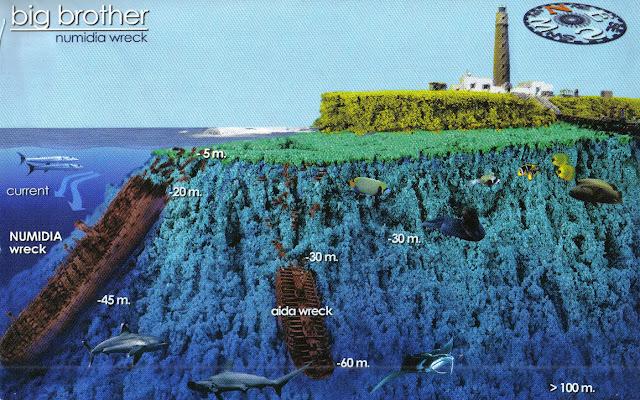 www.diverslandredsea.com