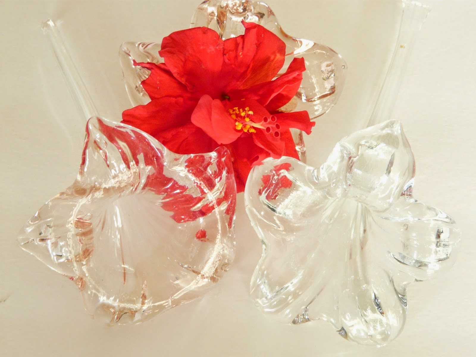 Using your creative energy hibiscus flower bloom holders these graceful and fragile glass vases resemble the shape of the hibiscus bloom izmirmasajfo