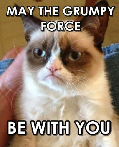 may grumpy cat be with you funny image
