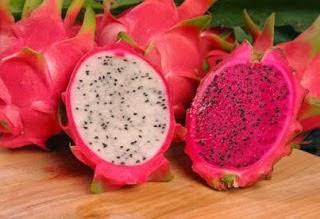 manfaat dan khasiat buah naga untuk kesehatan