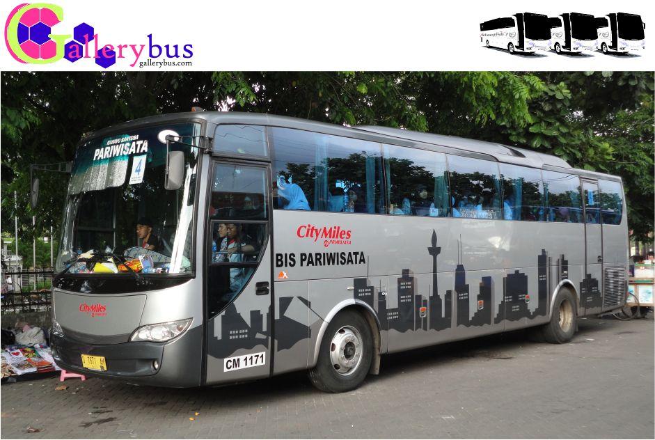 City Miles (Primajasa Group) - Evo X by Rahayu Santosa | Tourist Bus - Evo X City Miles (Primajasa Group)