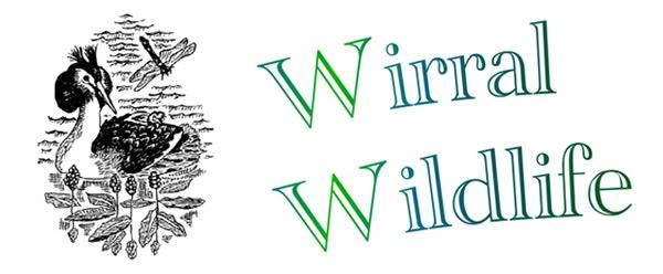 Wirral Wildlife Blog