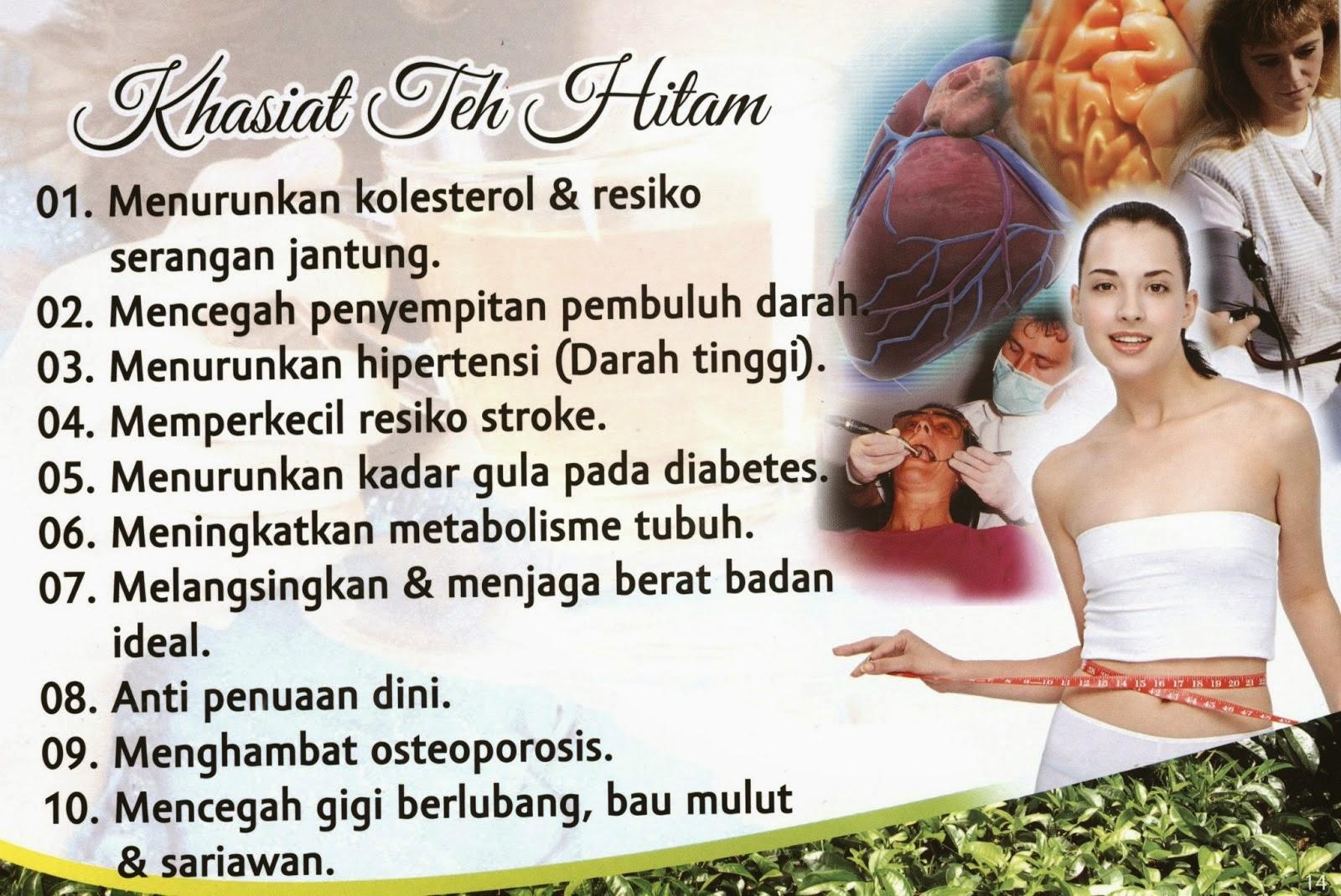 Obat Pelangsing Herbal Alami Fitslim Herbal – Terdaftar BPOM