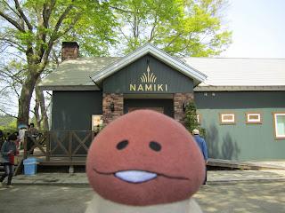 Namiki Gelato Shichinohe ナミキ・ジェラート 七戸町