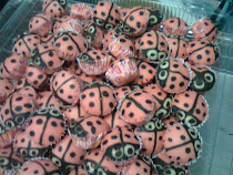 Apam ladybird..min ode 50pcs