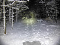 Night Patrol.  The Saratoga Skier and Hiker, first-hand accounts of adventures in the Adirondacks and beyond, and Gore Mountain ski blog.