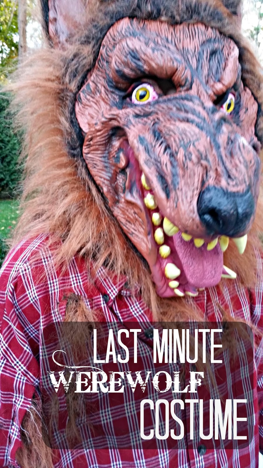 Easy diy werewolf costume redo it yourself inspirations easy diy easy diy werewolf costume solutioingenieria Choice Image