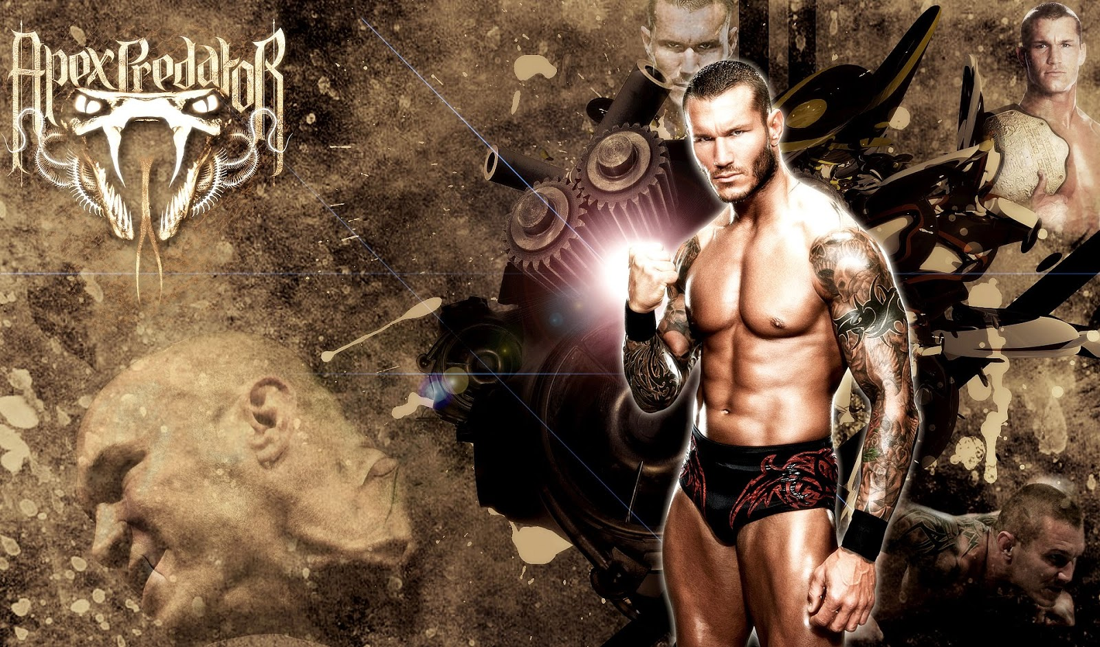 Randy Orton HD Wallpaper 2013