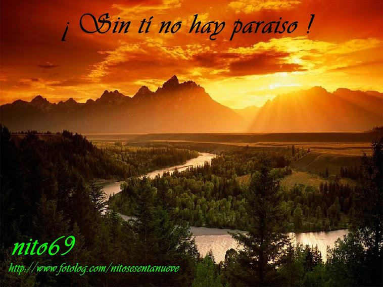 SIN TI NO HAY PARAISO