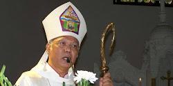 Mgr Johanes Pujasumarta