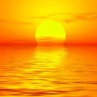 Vitamin D and the Elderly