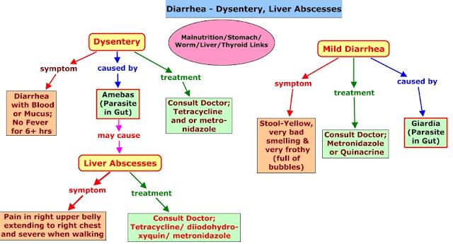 पेचिश रोग कारण और प्रकार