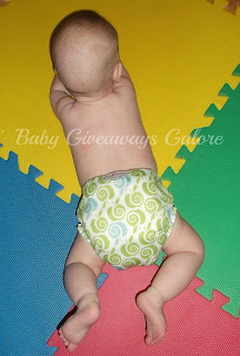 AppleCheeks, Cloth Diaper, Review