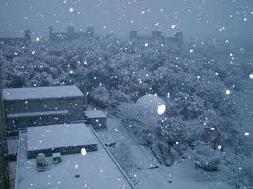efek salju di posting blog