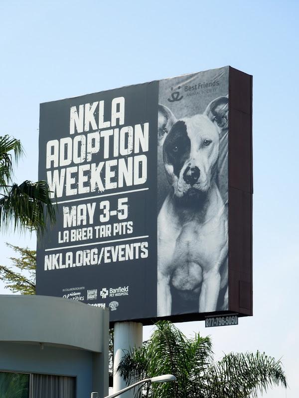 NKLA dog adoption billboard