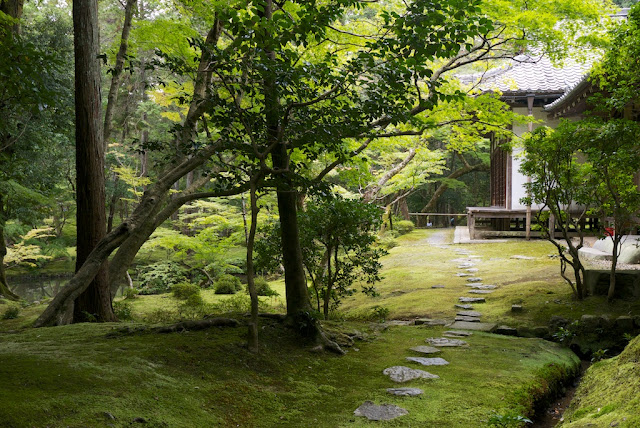 Saihoji (Moss-temple) . Saihoji Kyoto Kokedera that Steve Jobs loved.