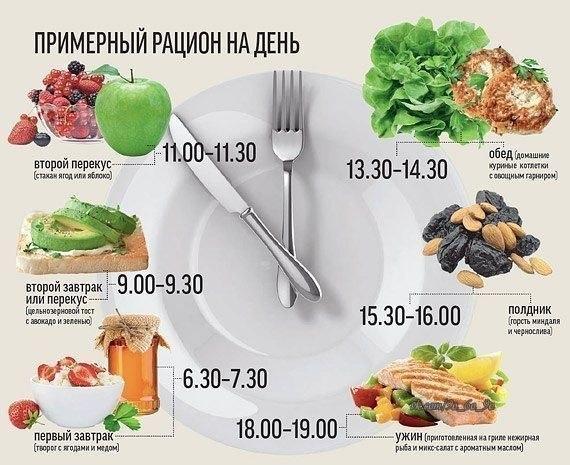правильное питание меню для похудения взрослому человеку