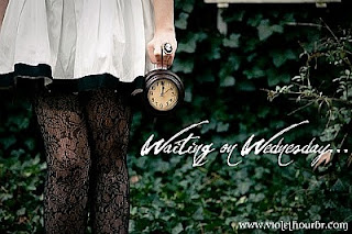 Waiting On Wednesday! (5)