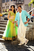 Loukyam Movie photos gallery-thumbnail-7