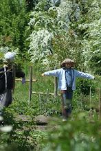 sorties scolaires au Jardin d'Hélène