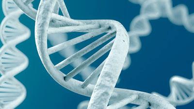 Conheça a startup que quer curar doenças ao editar seu DNA