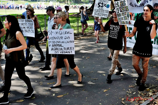 VEGANS against climate change - Sydney, Climate Change March, The Domain, Macquarie Street, Climate Change, Protest, #NoPlanetNoFuture, #PeoplesClimate, #PeoplesClimateMarch, #Sydney,