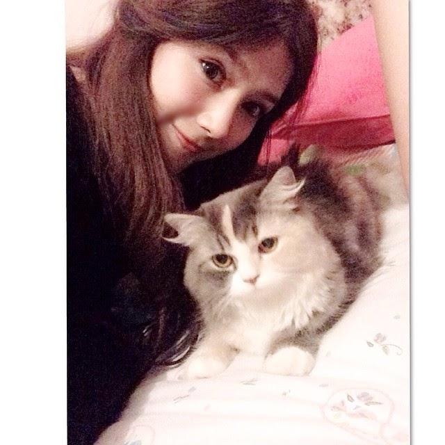 Foto Kucing nattasha nauljam