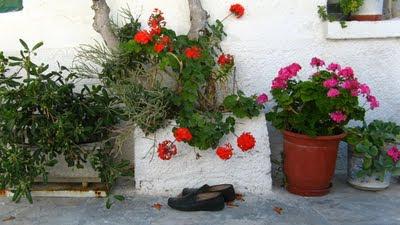 Foto Grecia Naxos