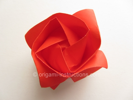Here Are Our Kawasaki Rose Version 2 Instructions
