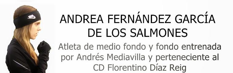 ANDREA FERNÁNDEZ GARCÍA DE LOS SALMONES