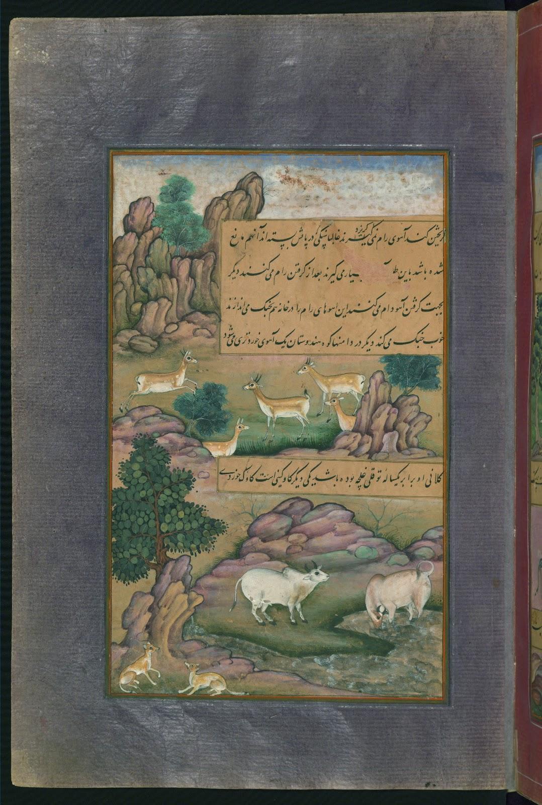 http://3.bp.blogspot.com/-sXzQ2y2U8HE/UDZfwt7ThvI/AAAAAAAADVY/2flQU41HF3c/s1600/Animals+of+Hindustan+small+deer+and+cows+called+g%C4%ABn%C4%AB,+from+Illuminated+manuscript+Baburnama+(Memoirs+of+Babur).jpg