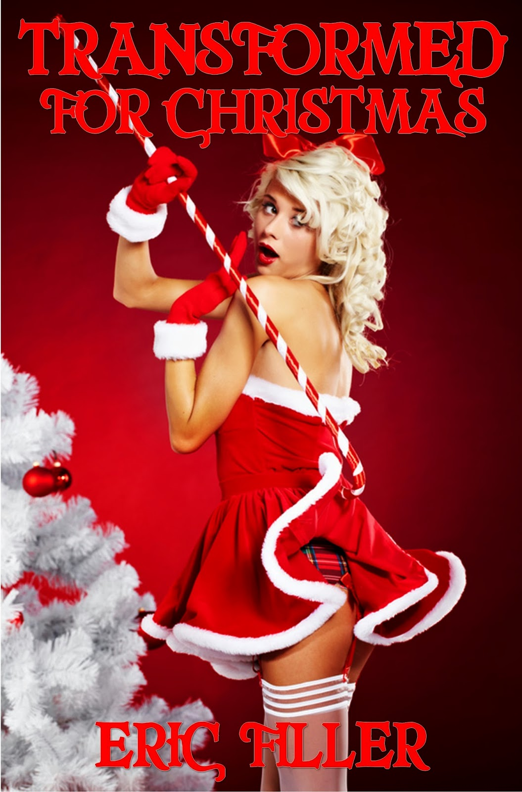 Erotic santa claus stories naked pic
