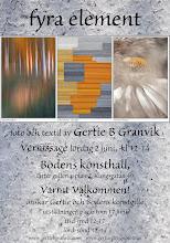 Exhibition 2012, Boden