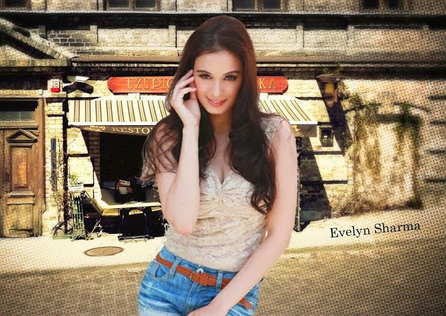 Evelyn+Sharma+Hd+Wallpapers+Free+Download002