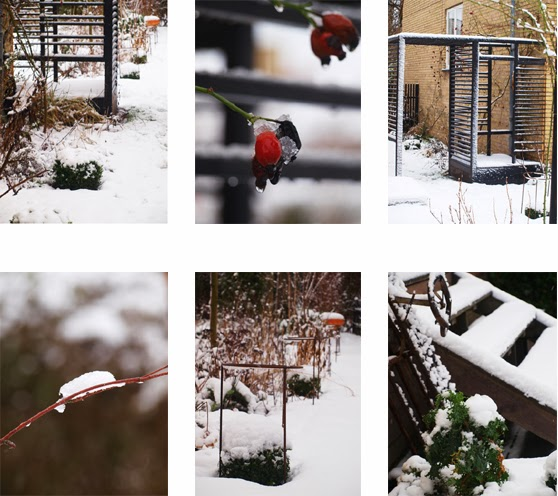 Haven med herlighedsværdi året rundt - også om vinteren.