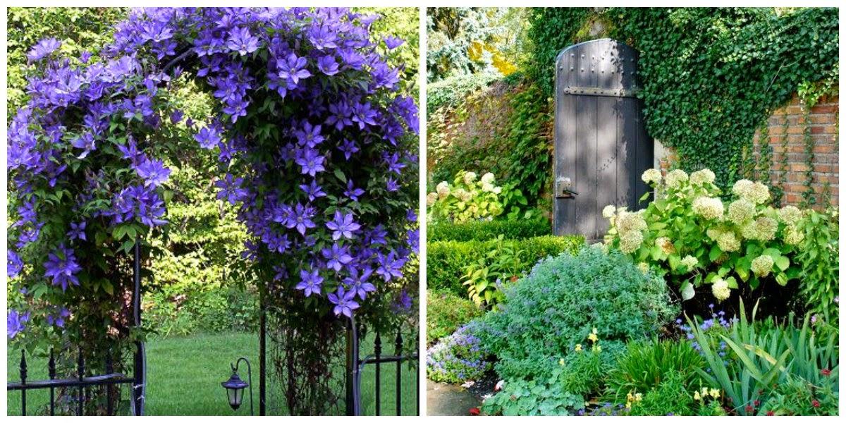 Dise a tu vida para el jardin - Entradas de jardines ...