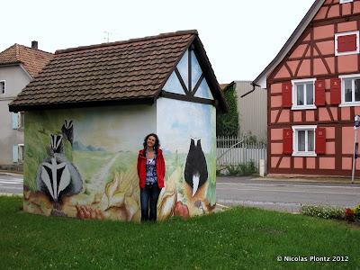 Maisons Alsace