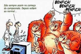 Monkeys & Futebol