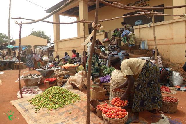 Bancarelle per la vendita di verdure, pomodori, igname e manioca Noepé, Togo, Africa